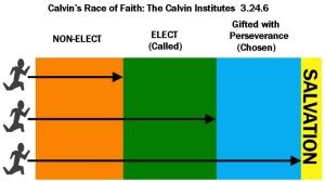 Calvin's Race