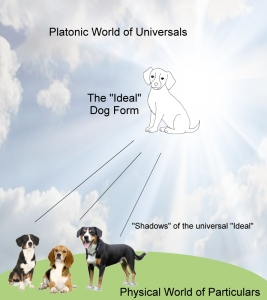 plato-dog-form